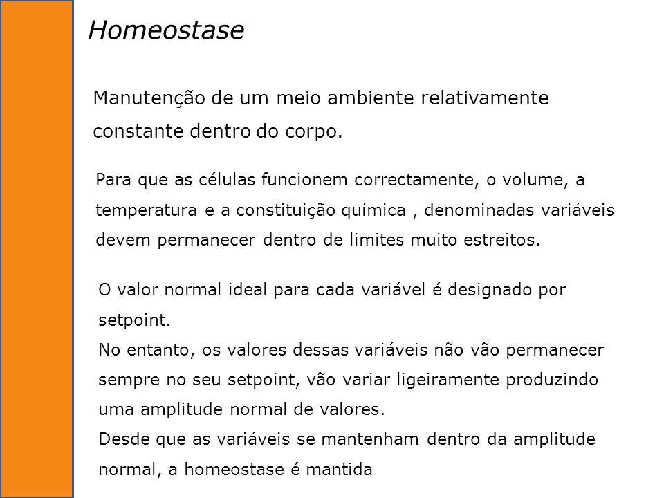 Homeostase Manutenção de um meio ambiente relativamente constante dentro do corpo.