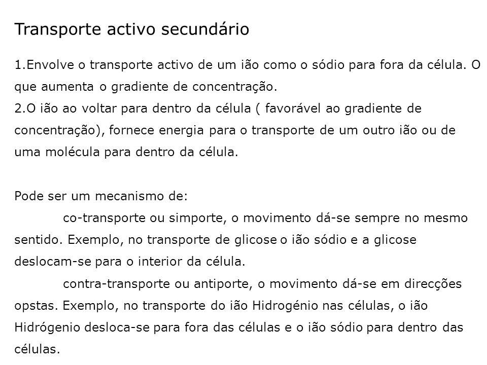 Transporte activo secundário