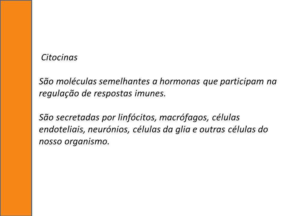 Citocinas São moléculas semelhantes a hormonas que participam na regulação de respostas imunes.