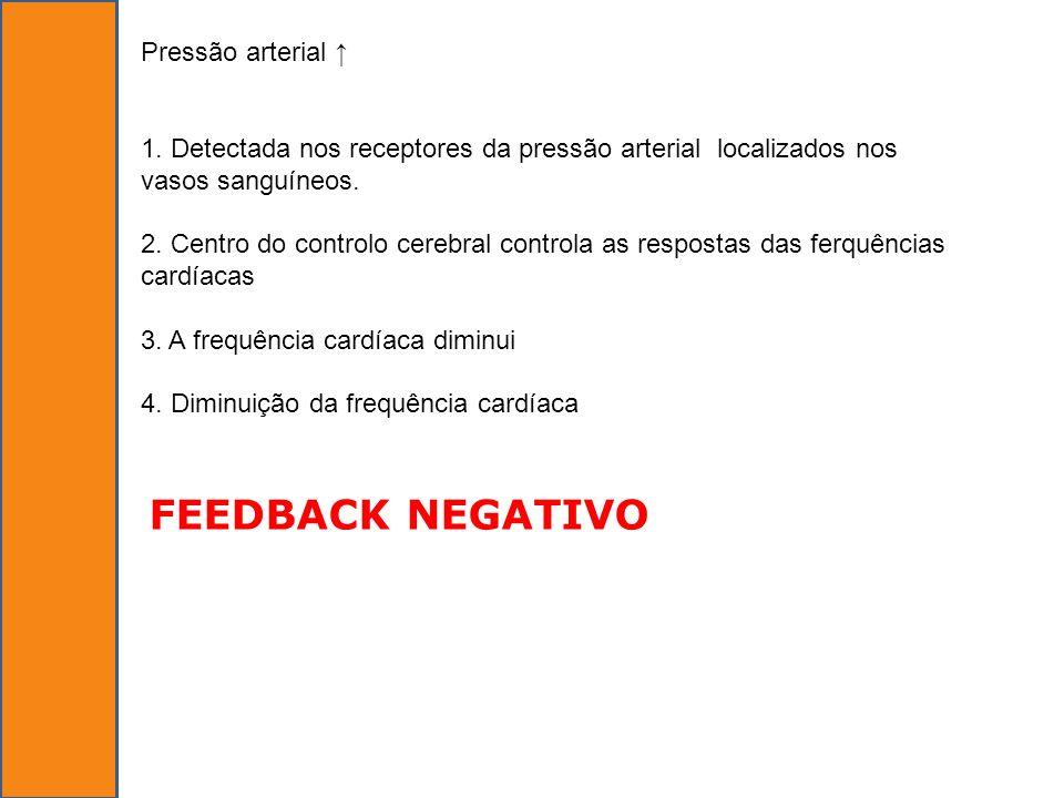 FEEDBACK NEGATIVO Pressão arterial ↑