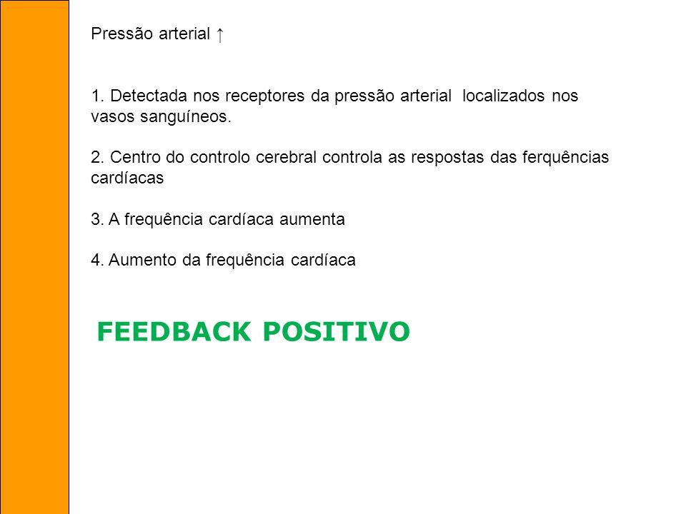 FEEDBACK POSITIVO Pressão arterial ↑