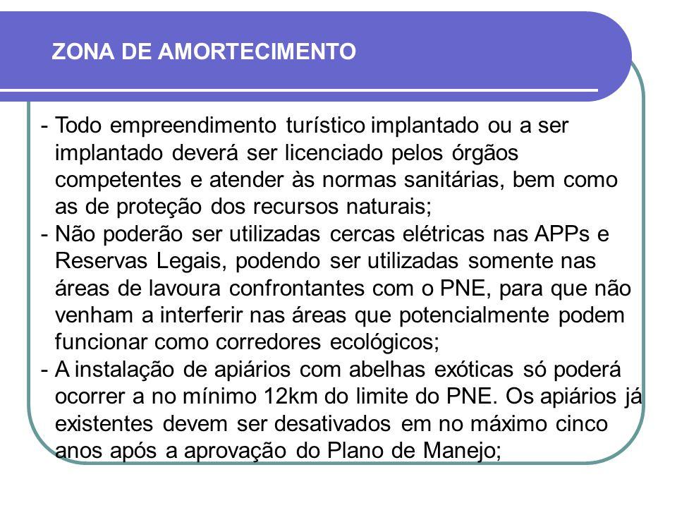 ZONA DE AMORTECIMENTO