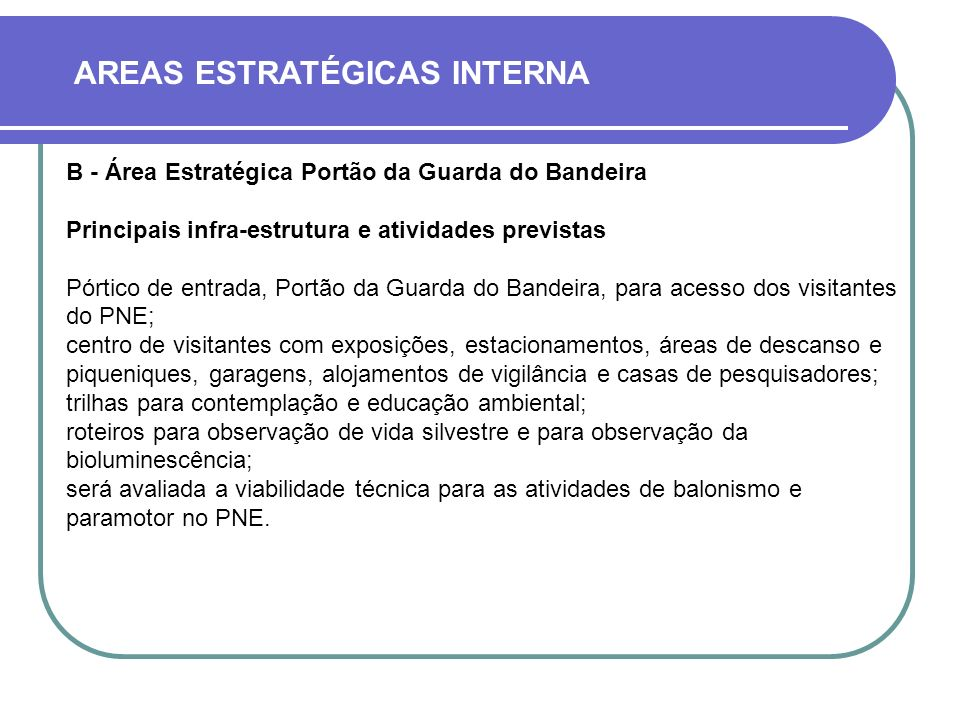AREAS ESTRATÉGICAS INTERNA