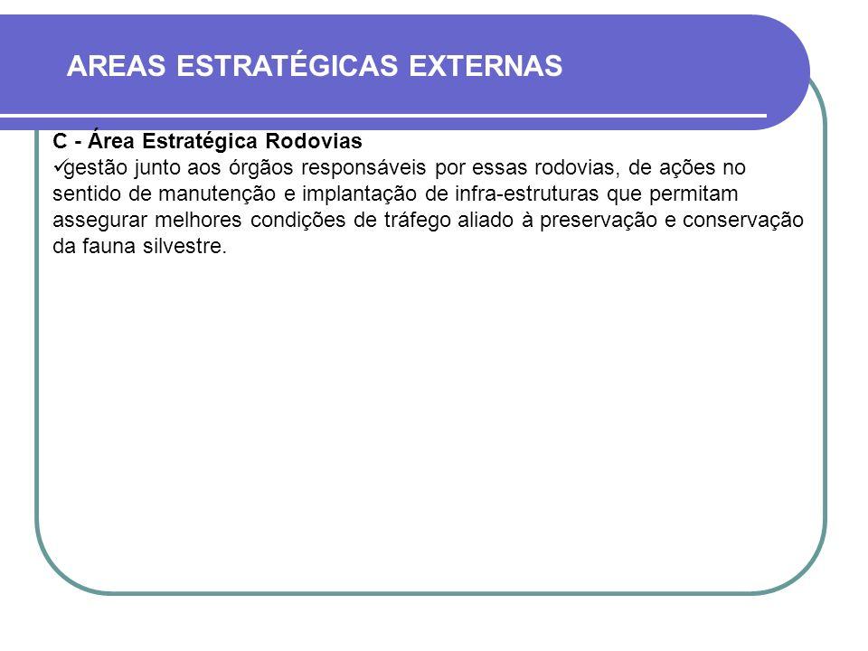 AREAS ESTRATÉGICAS EXTERNAS