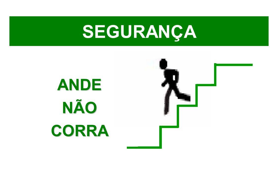 SEGURANÇA ANDE NÃO CORRA