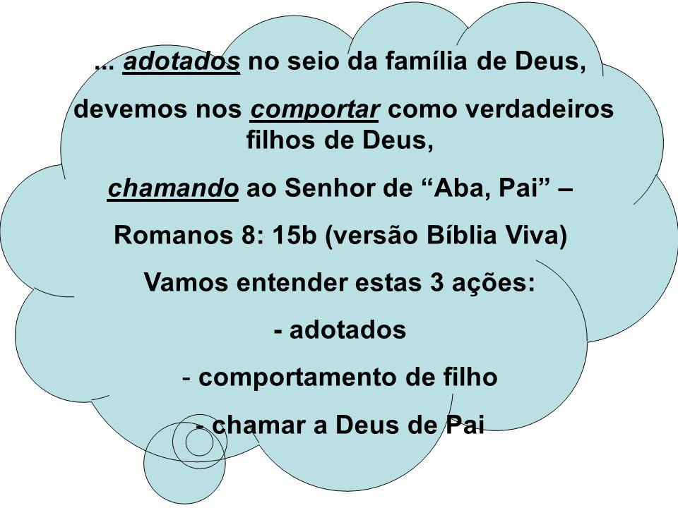 ... adotados no seio da família de Deus,
