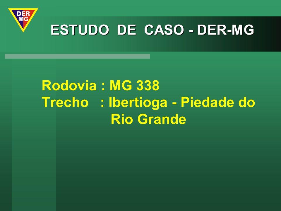 ESTUDO DE CASO - DER-MG