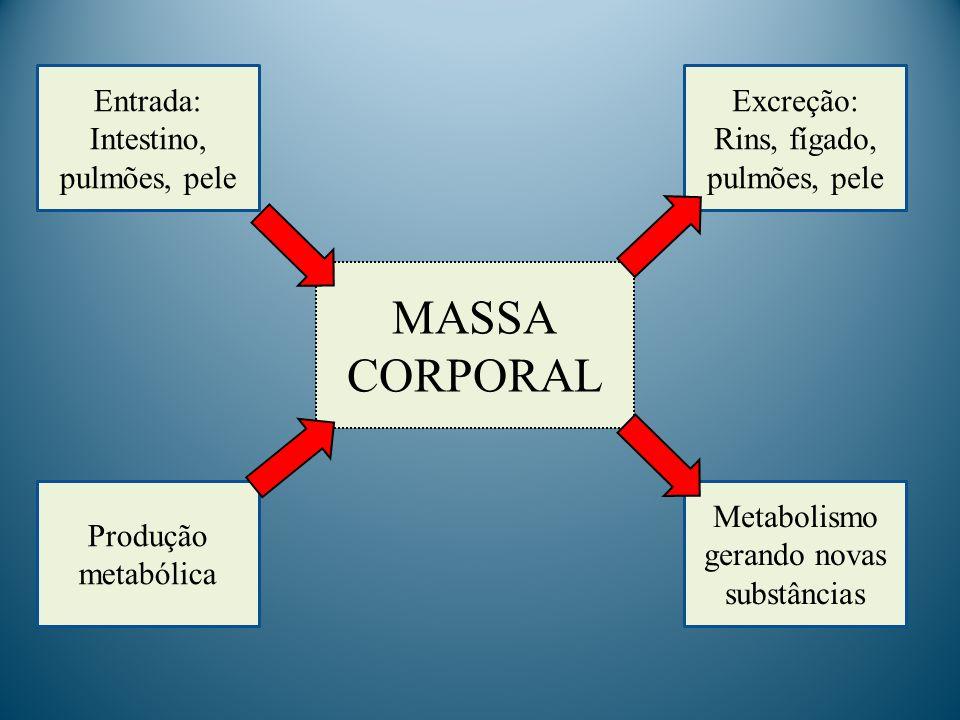 MASSA CORPORAL Entrada: Intestino, pulmões, pele Excreção: