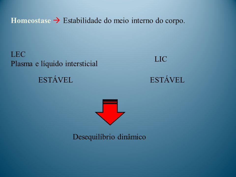 Homeostase  Estabilidade do meio interno do corpo. LEC. Plasma e líquido intersticial. LIC. ESTÁVEL.