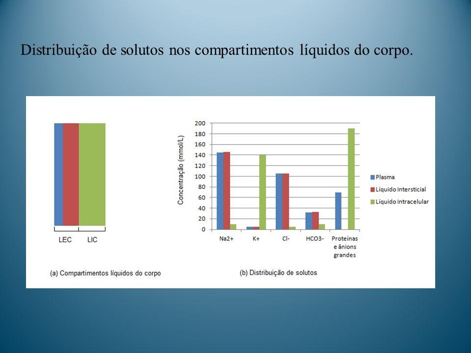 Distribuição de solutos nos compartimentos líquidos do corpo.