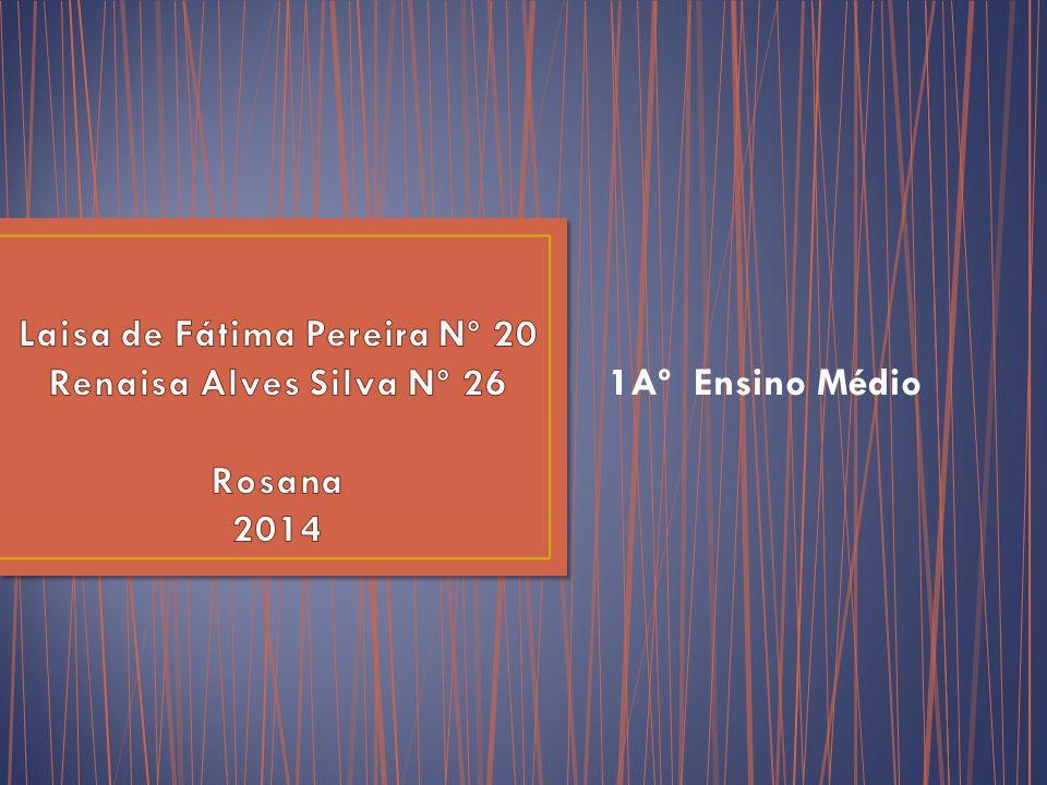 Laisa de Fátima Pereira Nº 20 Renaisa Alves Silva Nº 26 Rosana 2014