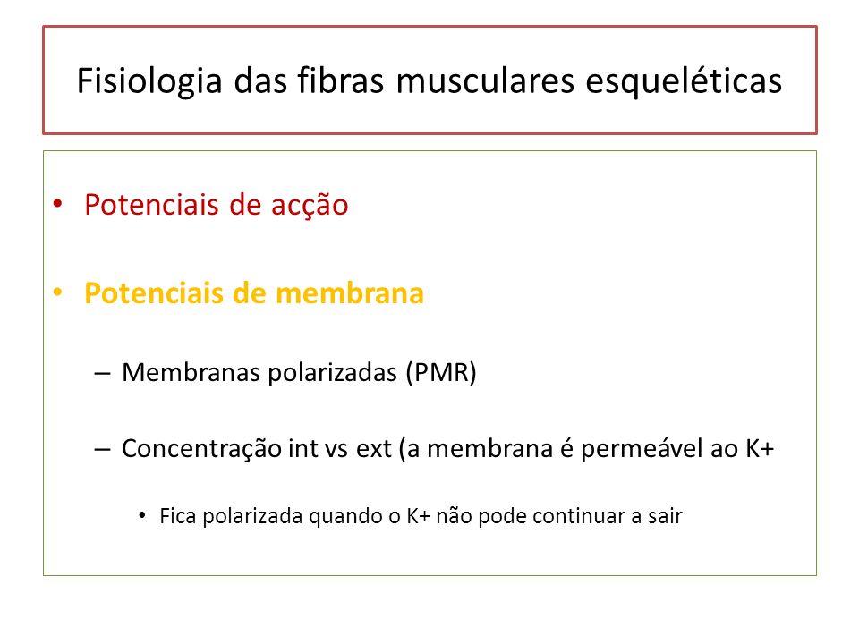 Fisiologia das fibras musculares esqueléticas