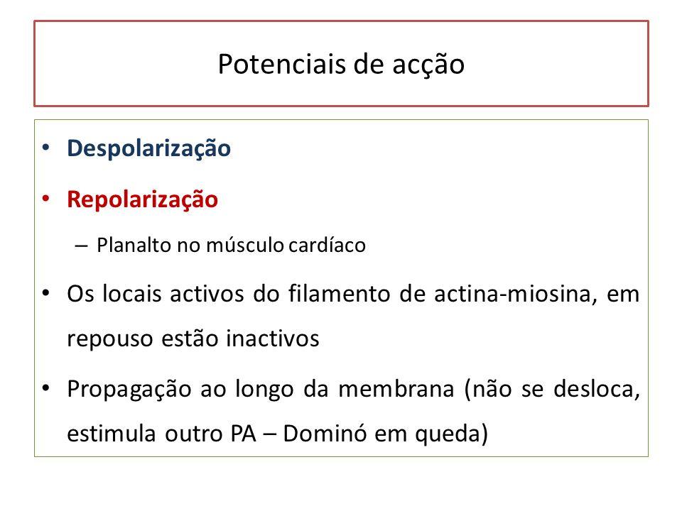 Potenciais de acção Despolarização Repolarização