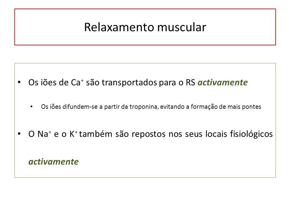 Relaxamento muscular Os iões de Ca+ são transportados para o RS activamente.