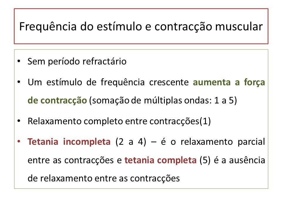 Frequência do estímulo e contracção muscular