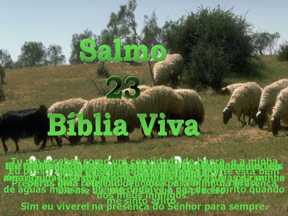 Salmo 23 Bíblia Viva O Senhor é o meu Pastor