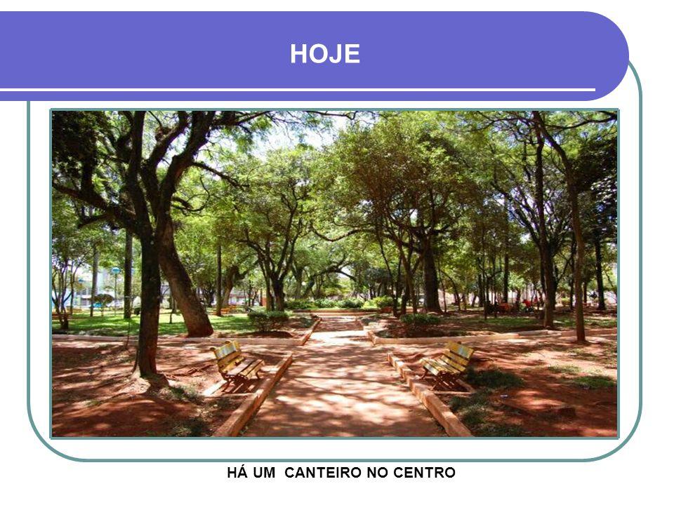 HOJE HÁ UM CANTEIRO NO CENTRO