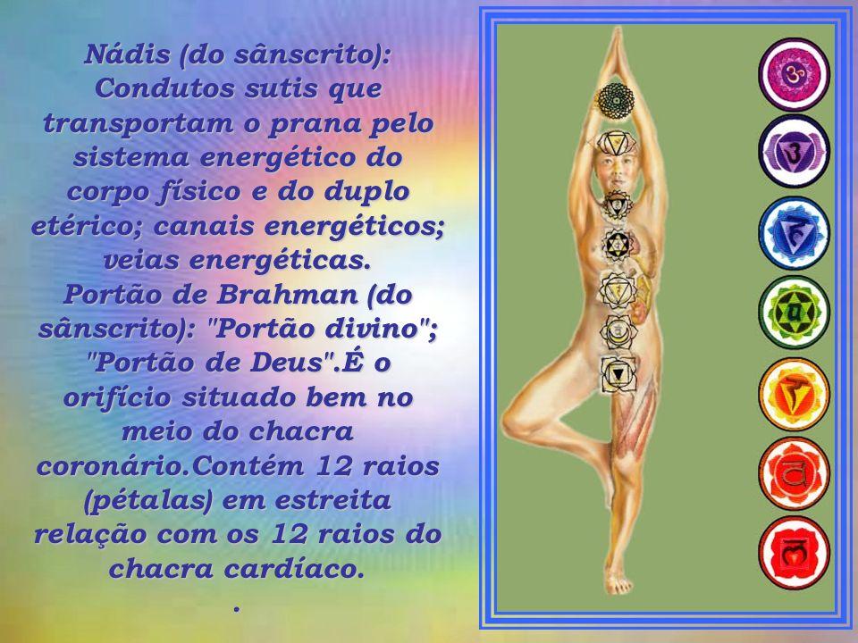 Nádis (do sânscrito): Condutos sutis que transportam o prana pelo sistema energético do corpo físico e do duplo etérico; canais energéticos; veias energéticas.
