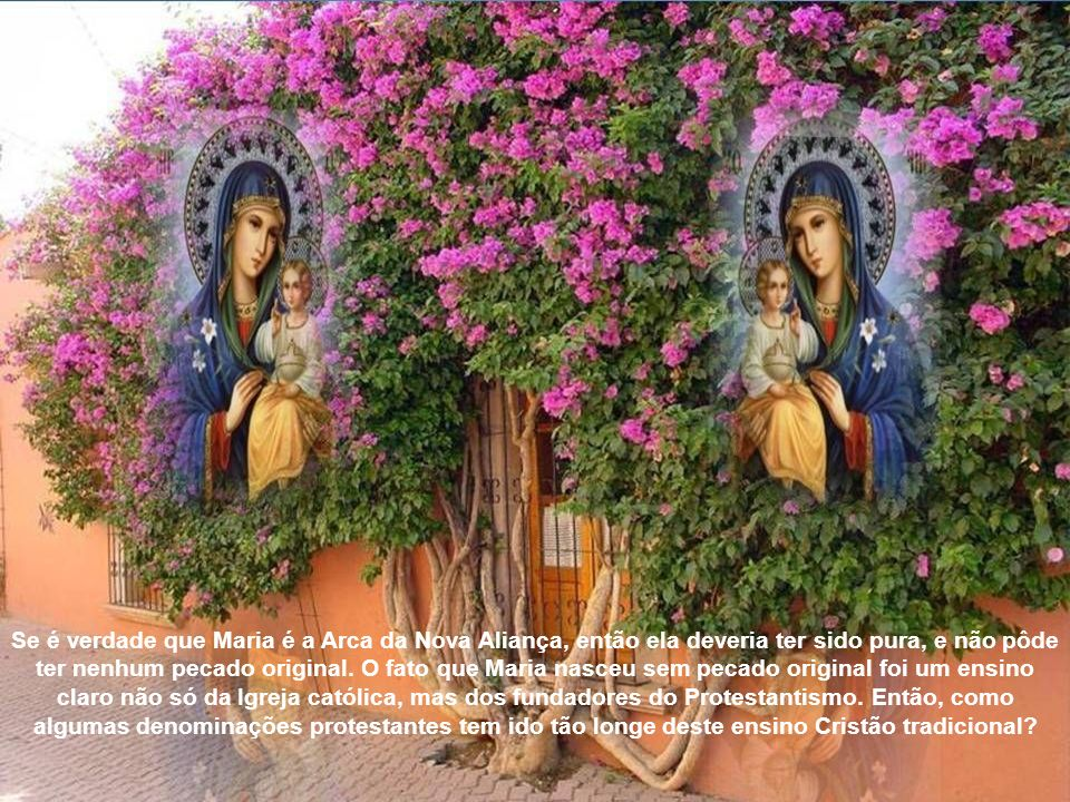 Se é verdade que Maria é a Arca da Nova Aliança, então ela deveria ter sido pura, e não pôde ter nenhum pecado original.