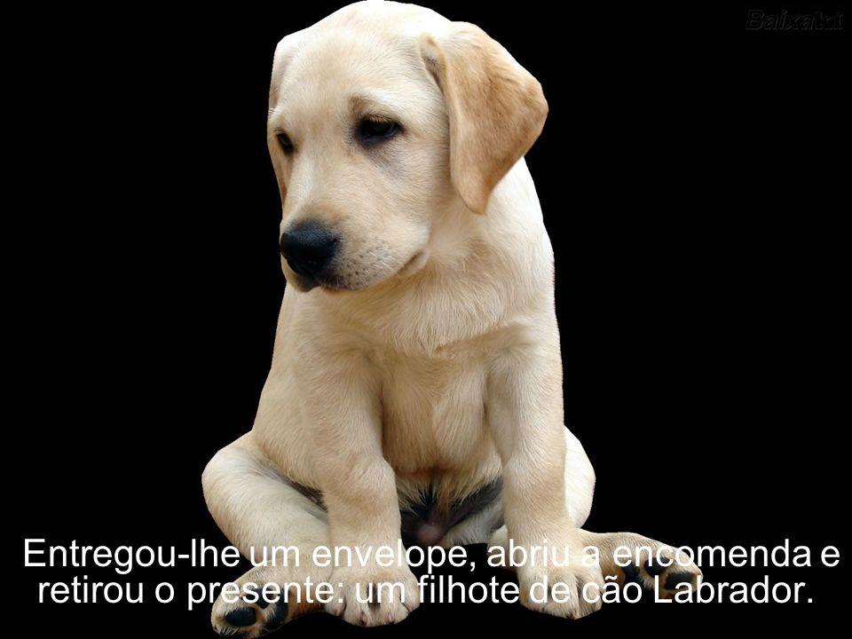 Entregou-lhe um envelope, abriu a encomenda e retirou o presente: um filhote de cão Labrador.