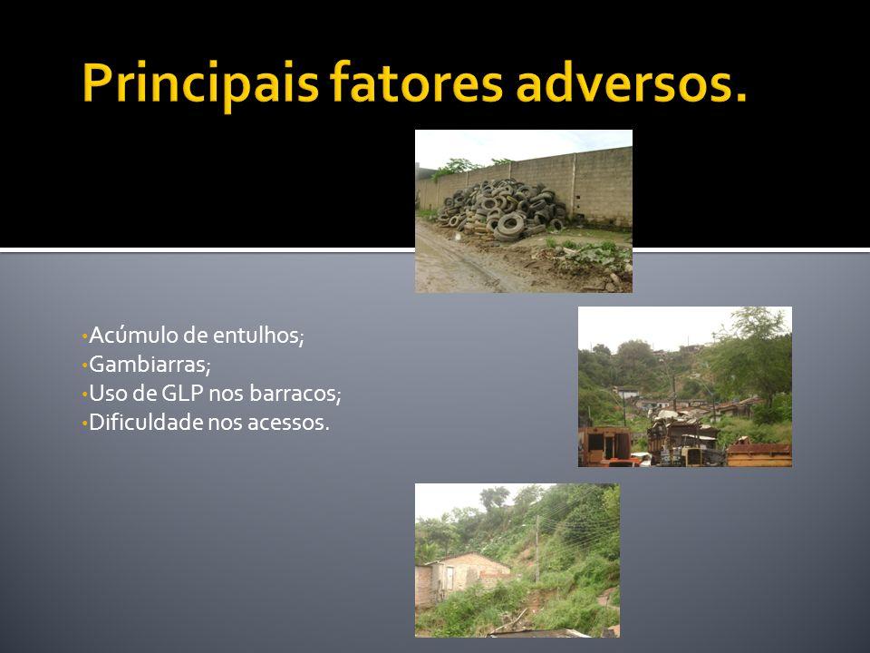Principais fatores adversos.
