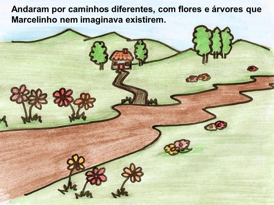 Andaram por caminhos diferentes, com flores e árvores que