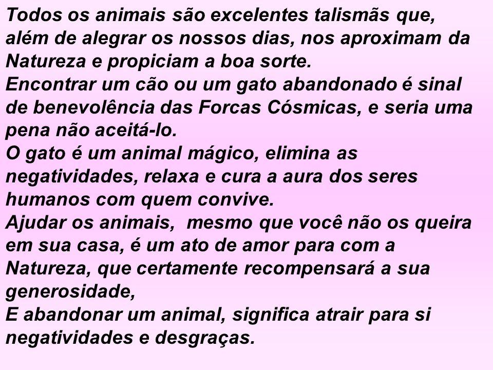 Todos os animais são excelentes talismãs que, além de alegrar os nossos dias, nos aproximam da Natureza e propiciam a boa sorte.