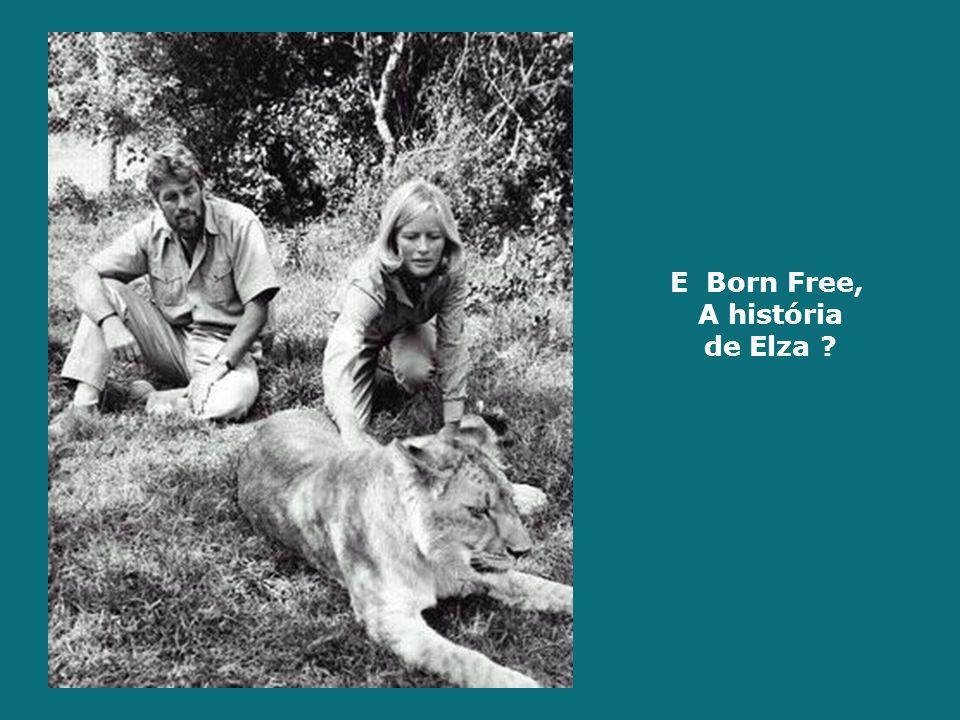 E Born Free, A história de Elza