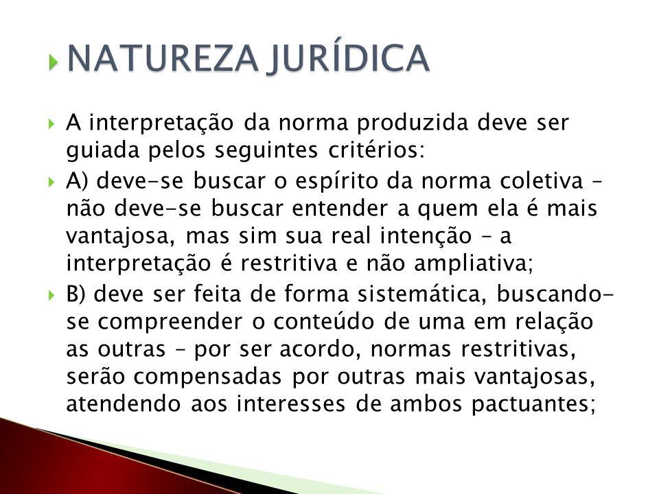 NATUREZA JURÍDICA A interpretação da norma produzida deve ser guiada pelos seguintes critérios: