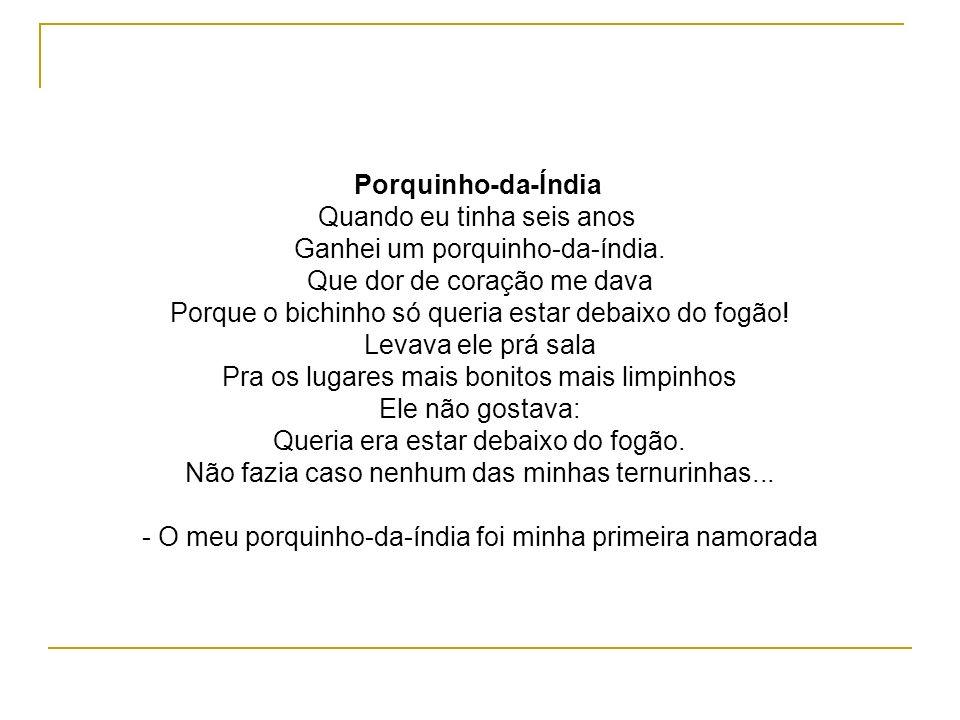 Porquinho-da-Índia