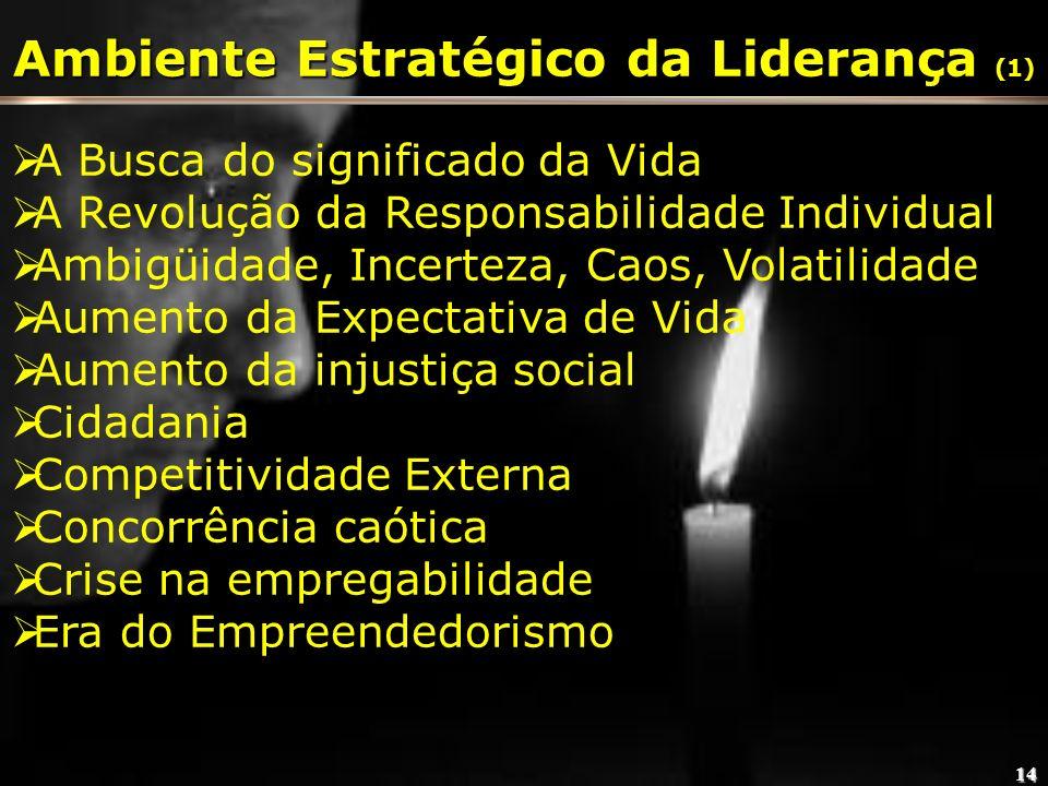 Ambiente Estratégico da Liderança (1)