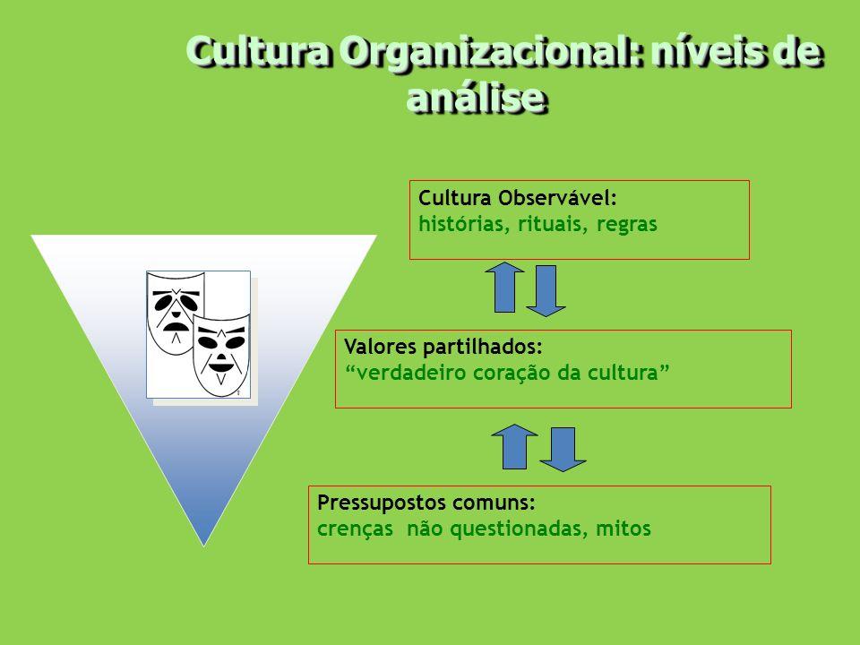 Cultura Organizacional: níveis de análise