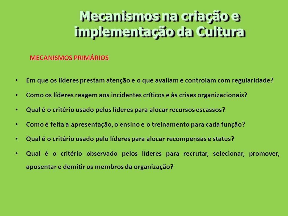 Mecanismos na criação e implementação da Cultura