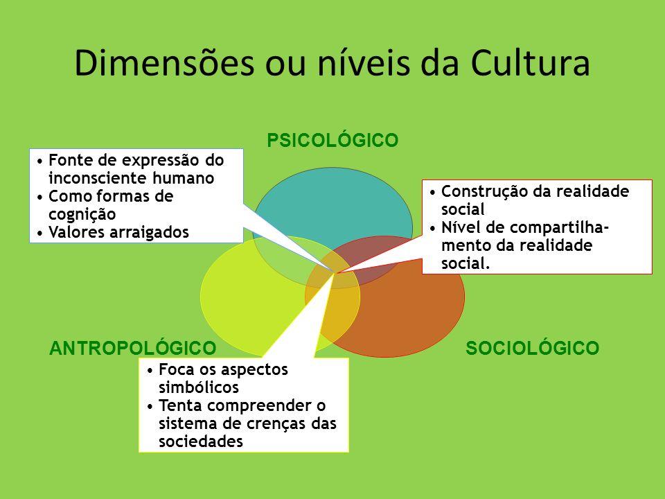 Dimensões ou níveis da Cultura