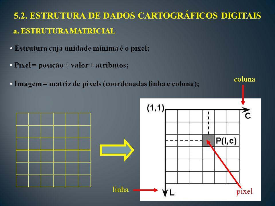 5.2. ESTRUTURA DE DADOS CARTOGRÁFICOS DIGITAIS