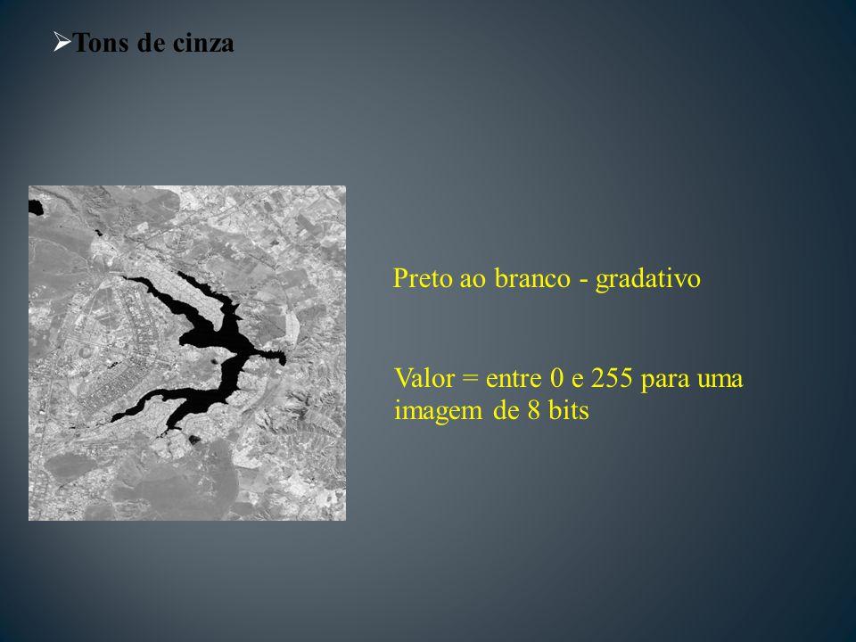 Tons de cinza Preto ao branco - gradativo Valor = entre 0 e 255 para uma imagem de 8 bits