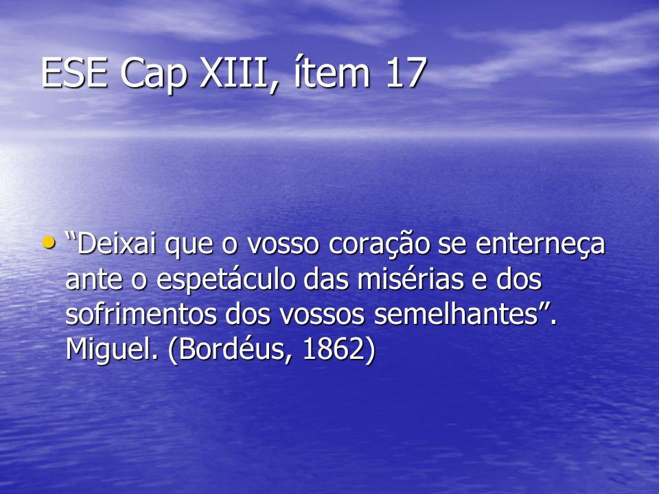 ESE Cap XIII, ítem 17