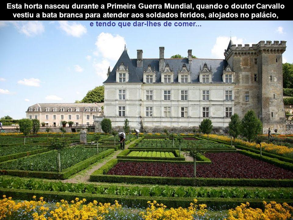 Esta horta nasceu durante a Primeira Guerra Mundial, quando o doutor Carvallo vestiu a bata branca para atender aos soldados feridos, alojados no palácio, e tendo que dar-lhes de comer...
