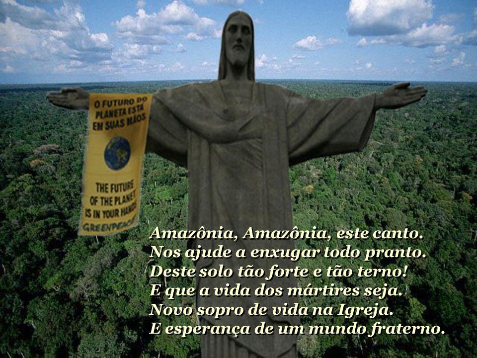 Amazônia, Amazônia, este canto. Nos ajude a enxugar todo pranto