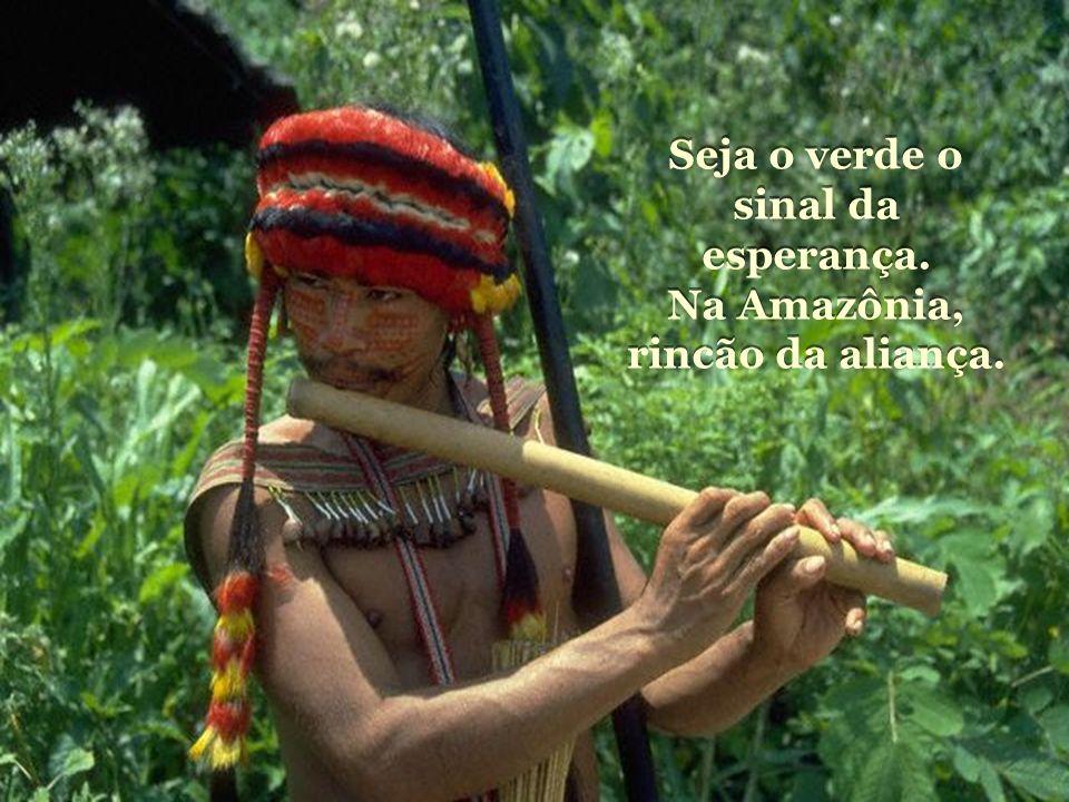 Seja o verde o sinal da esperança. Na Amazônia, rincão da aliança.
