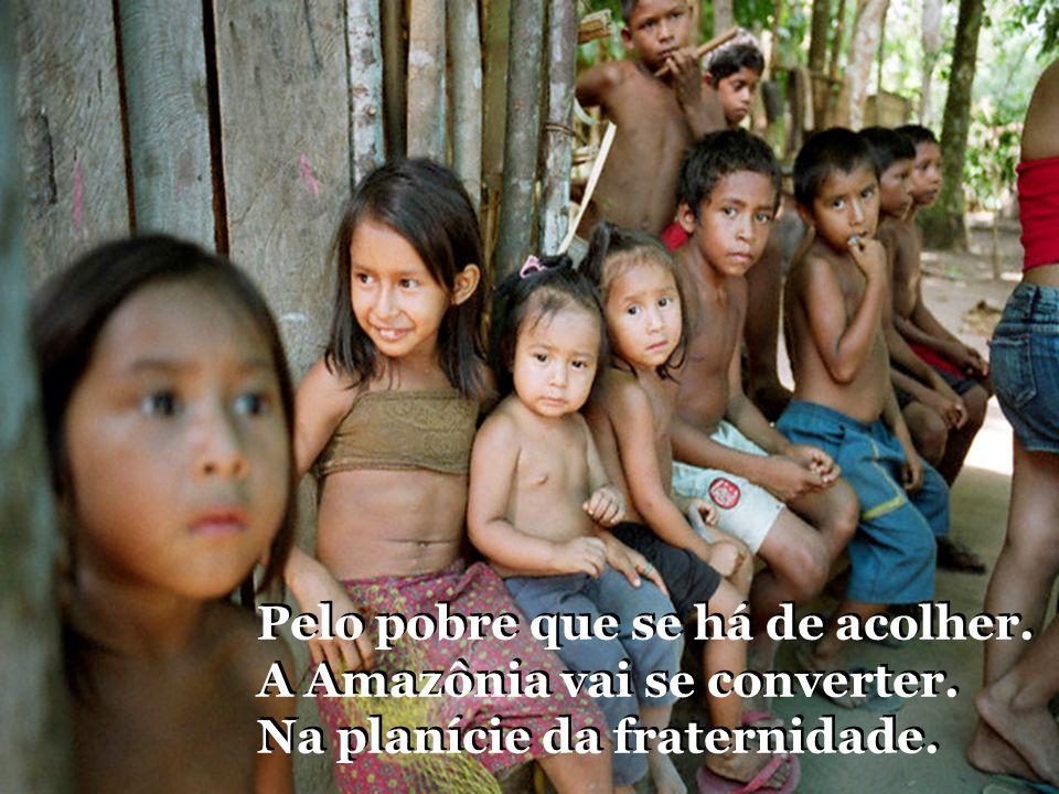 Pelo pobre que se há de acolher. A Amazônia vai se converter