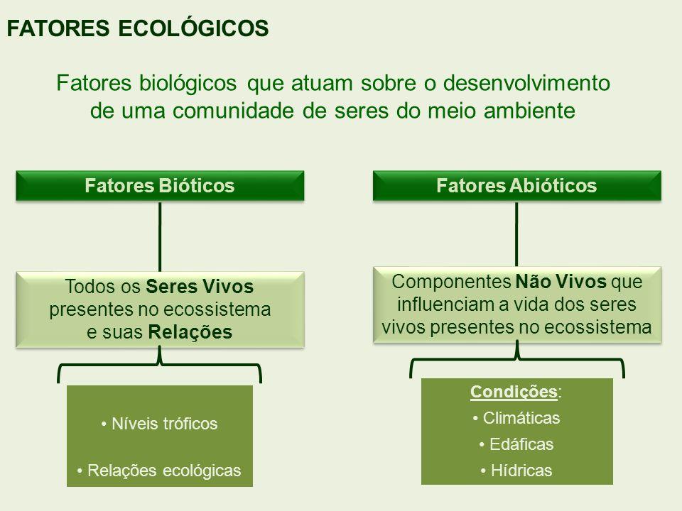 FATORES ECOLÓGICOS Fatores biológicos que atuam sobre o desenvolvimento de uma comunidade de seres do meio ambiente.