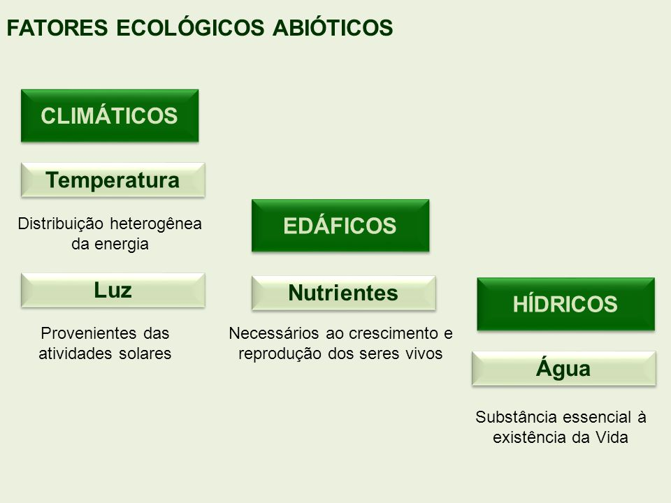 CLIMÁTICOS Temperatura EDÁFICOS Luz Nutrientes HÍDRICOS Água