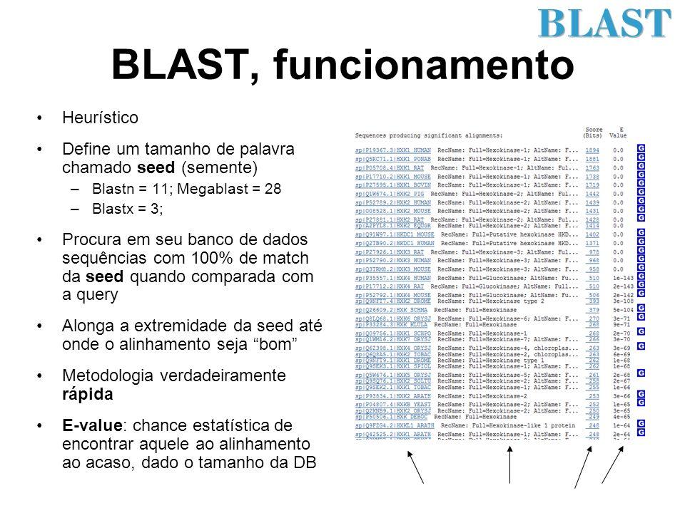 BLAST, funcionamento Heurístico