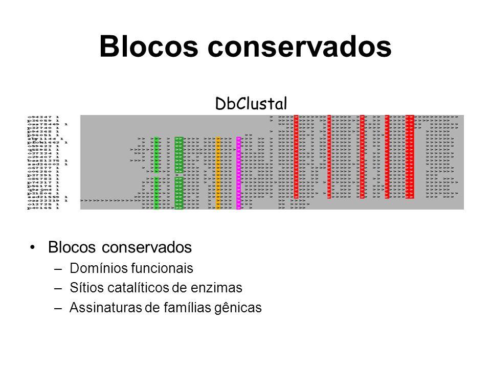 Blocos conservados DbClustal Blocos conservados Domínios funcionais