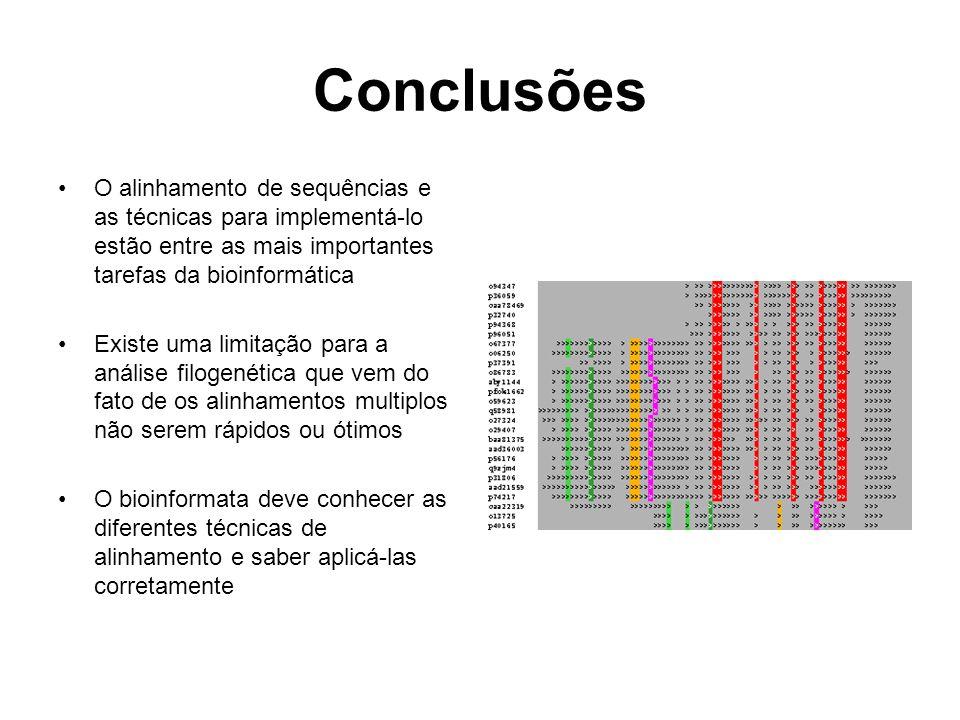 Conclusões O alinhamento de sequências e as técnicas para implementá-lo estão entre as mais importantes tarefas da bioinformática.