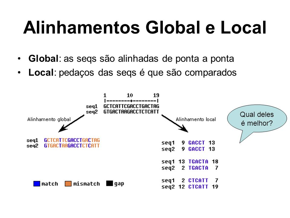 Alinhamentos Global e Local