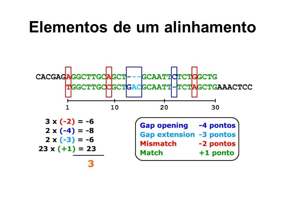 Elementos de um alinhamento