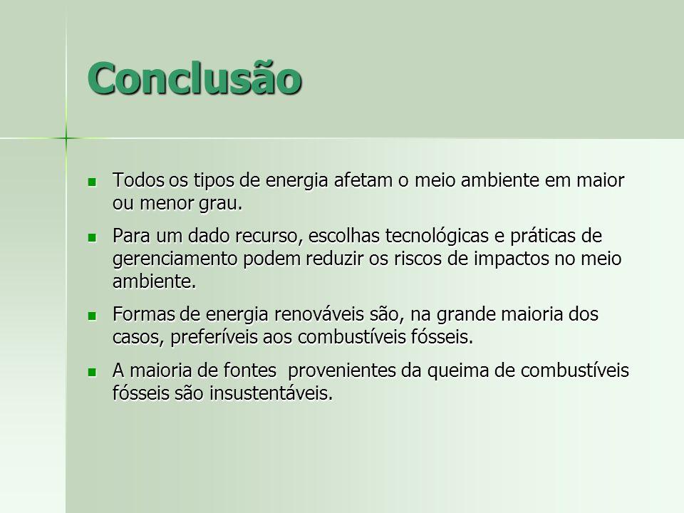 Conclusão Todos os tipos de energia afetam o meio ambiente em maior ou menor grau.