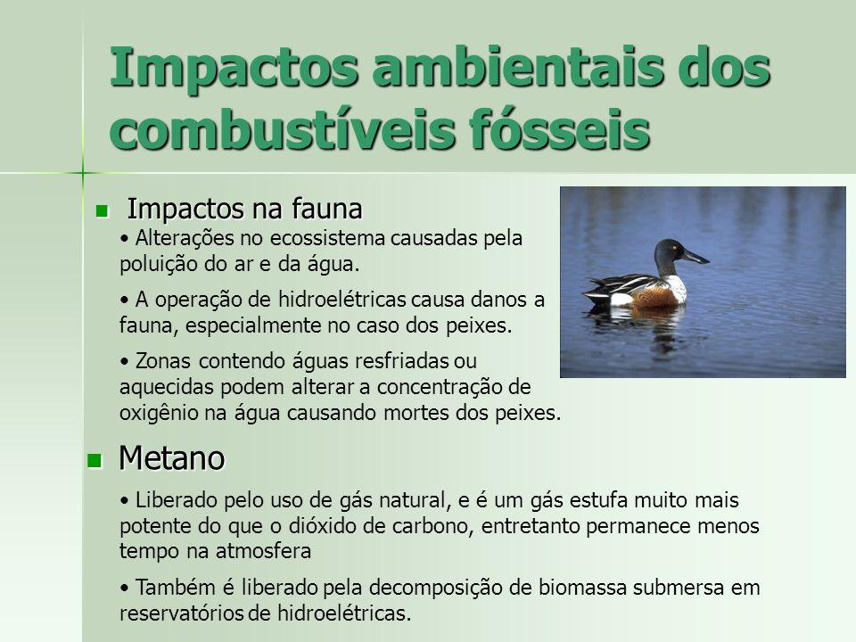 Impactos ambientais dos combustíveis fósseis